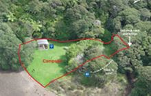 The Green Campsite . Great Barrier Island/Aotea