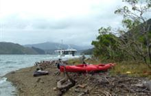 Pipi Beach Campsite . Pelorus Sound/Te Hoiere and Kenepuru Sound area